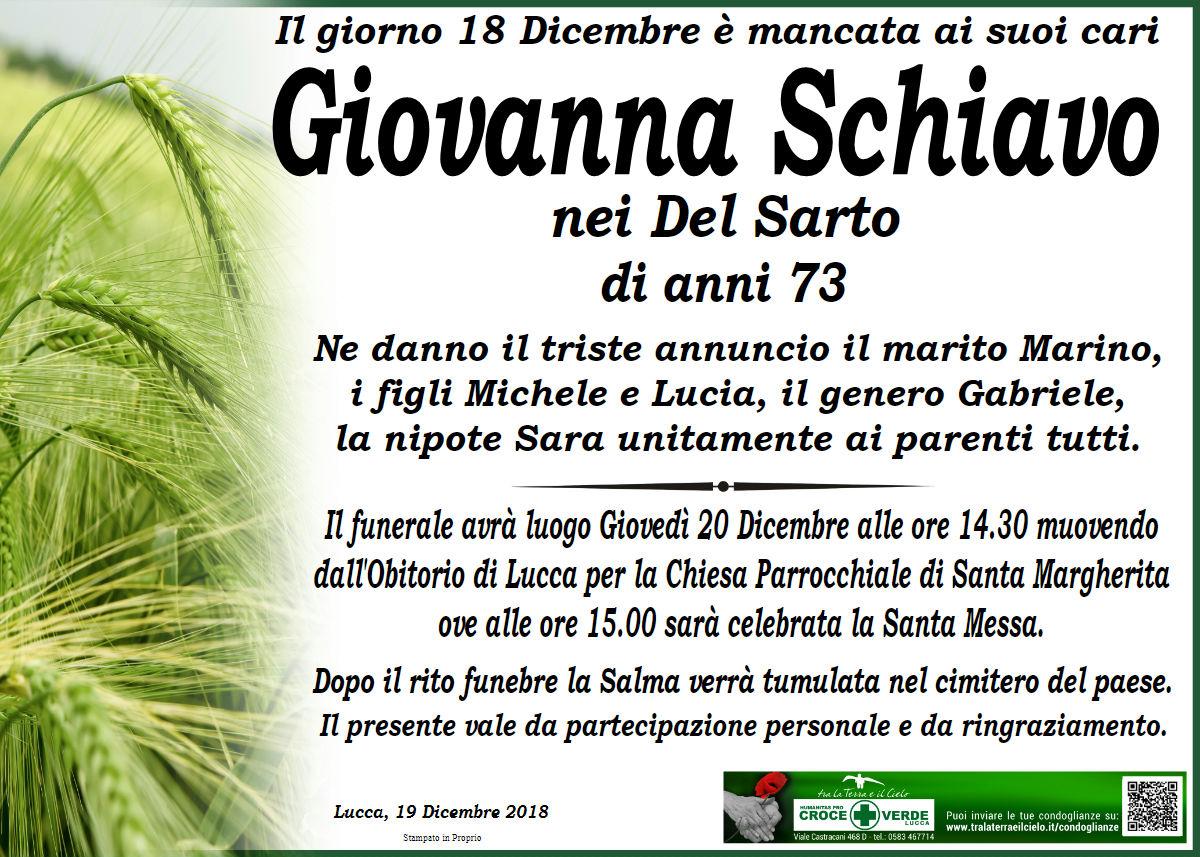 Giovanna Schiavo nei Del Sarto